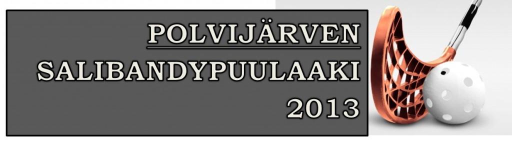 salibandypuulaaki 2013 logo